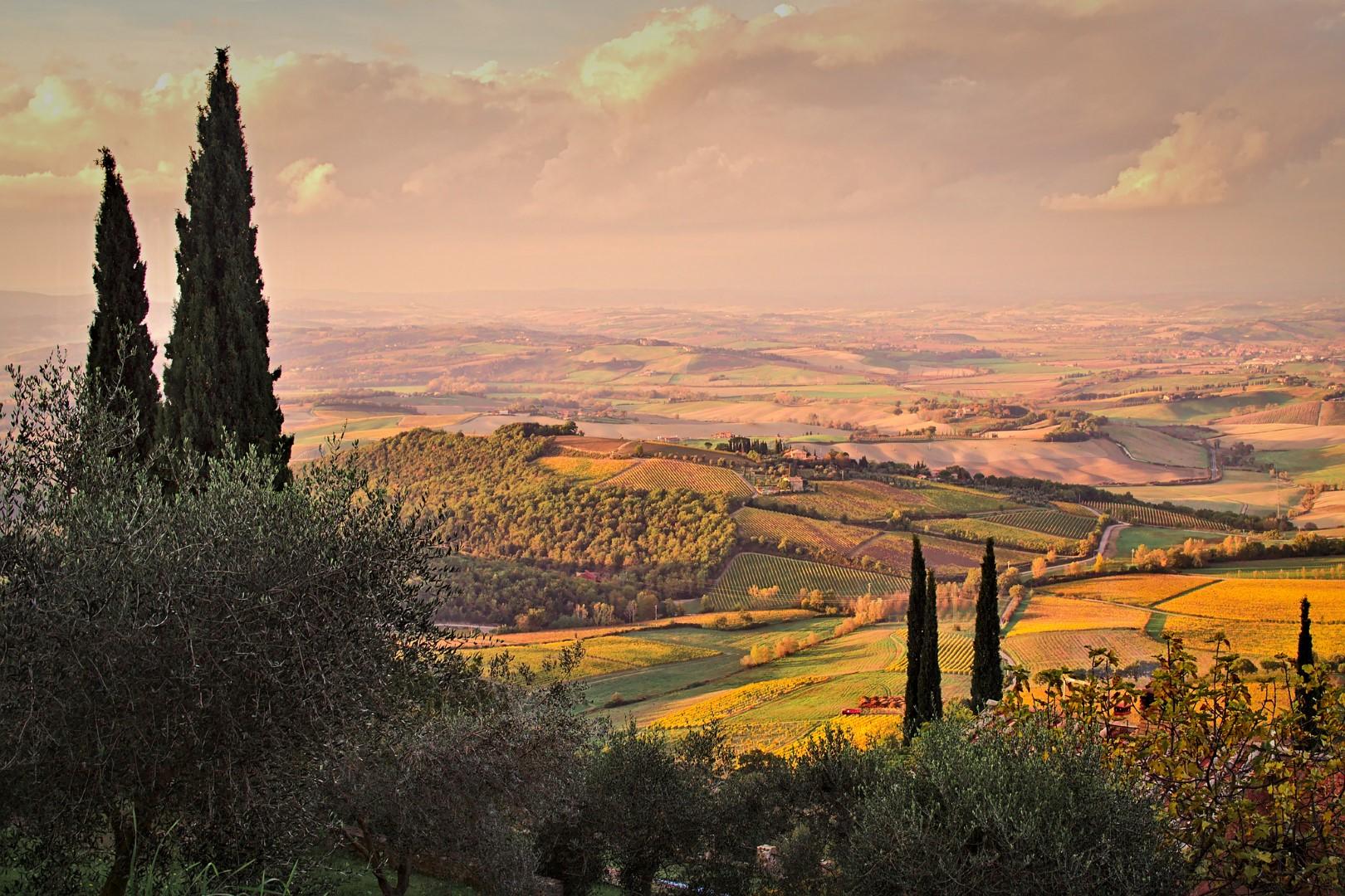 Toscana gastronomica traveller tour operator for Francia cultura gastronomica